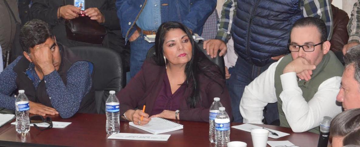 Ante Heladas, Urgente la Declaratoria de Desastre para Apoyar a Agricultores del Mayo: Alcaldesa Quintero Borbón