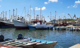 Listos pescadores de Sonora para la temporada camaronera