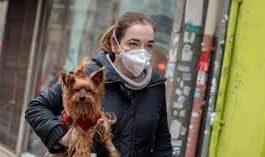 Rusia registra la primera vacuna COVID-19 para animales