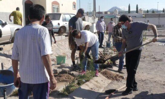 Realizan campañas de reforestación y limpieza en La Mesa